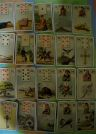 What do the Lenormand cards reveal?