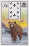 15 bear