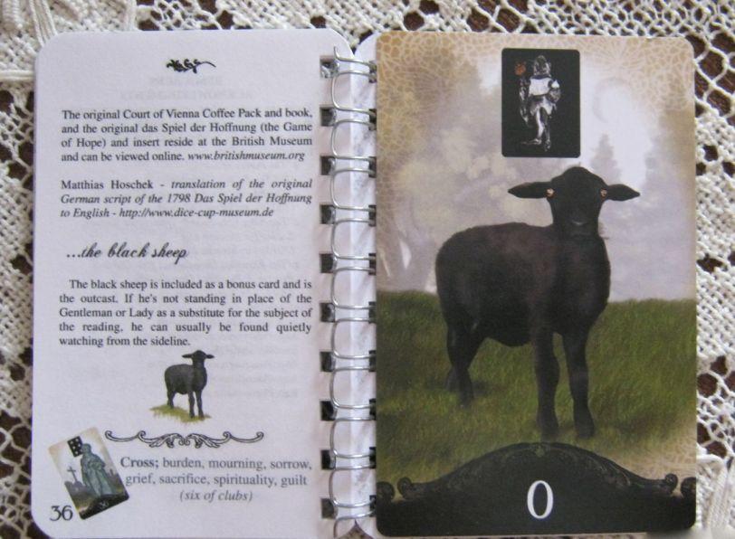 ForTheSeekers LWB. The Black Sheep.